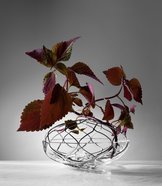 Bloom Vas